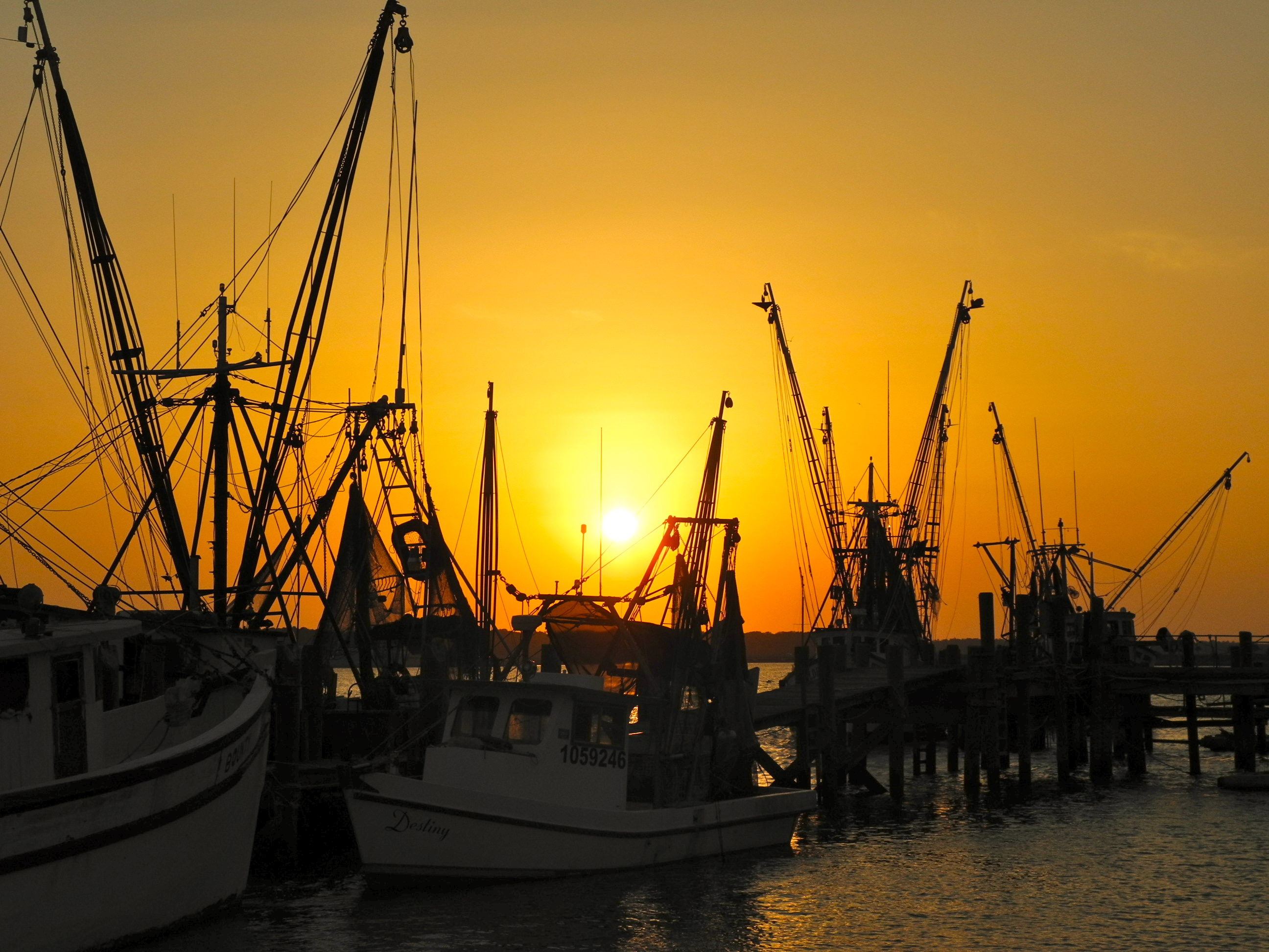 Day Trips - South Carolina Lowcountry