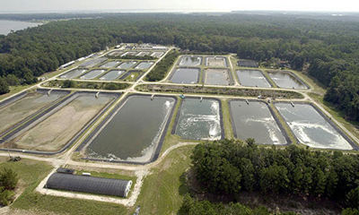 James M. Waddell, Jr. Mariculture Research and Development Center