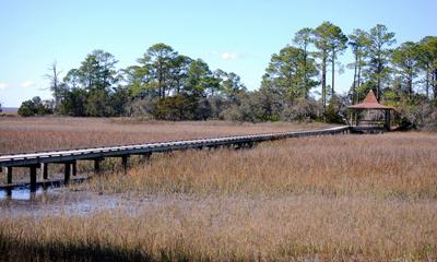 Marsh Boardwalks at Hunting Island State Park