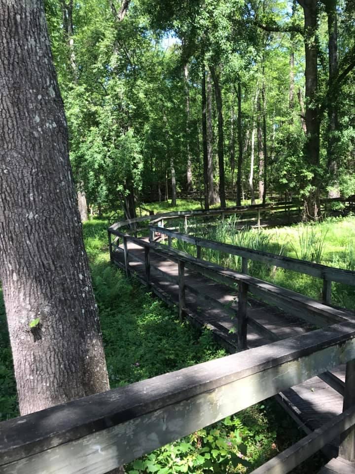 Blue Heron Nature Trail
