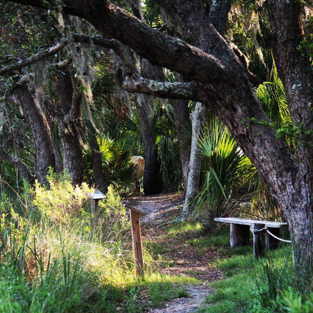 Fripp Island Audubon Trail