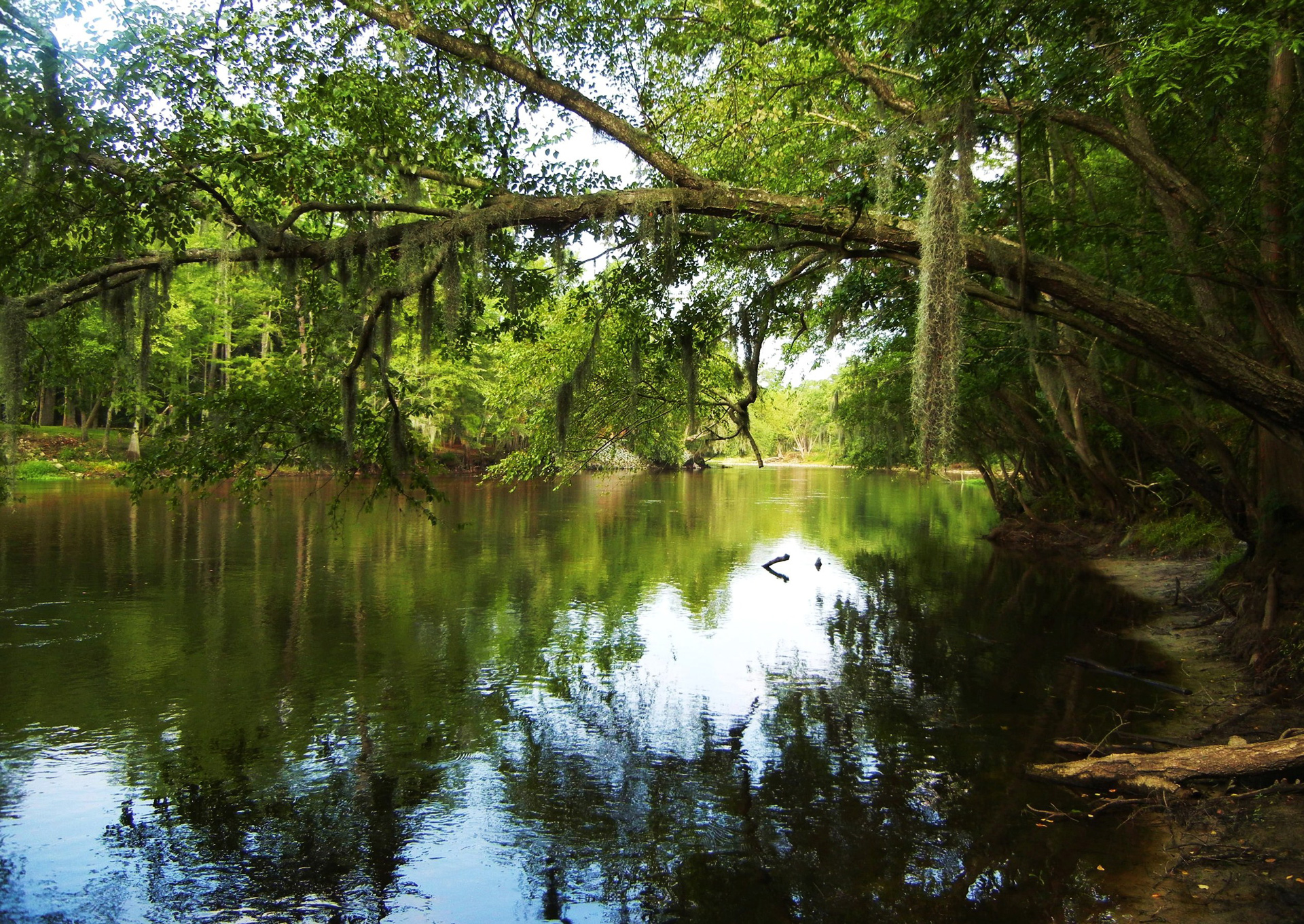 State Parks Lowcountry