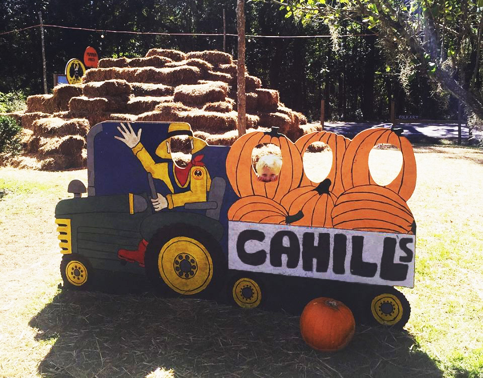 Hay bales at Cahill Pumpkin Patch
