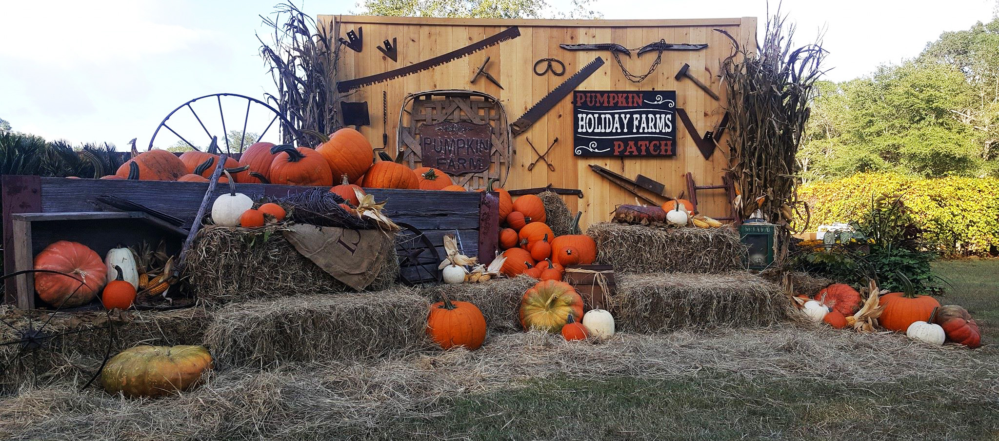 SC Lowcountry Pumpkin Patches and Beaufort Ghost Tours