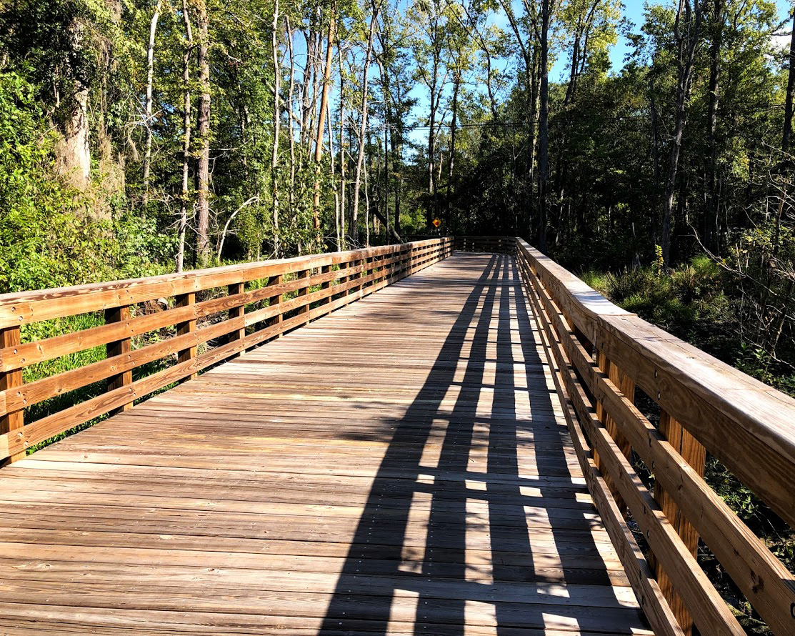 spanish moss trail boardwalk