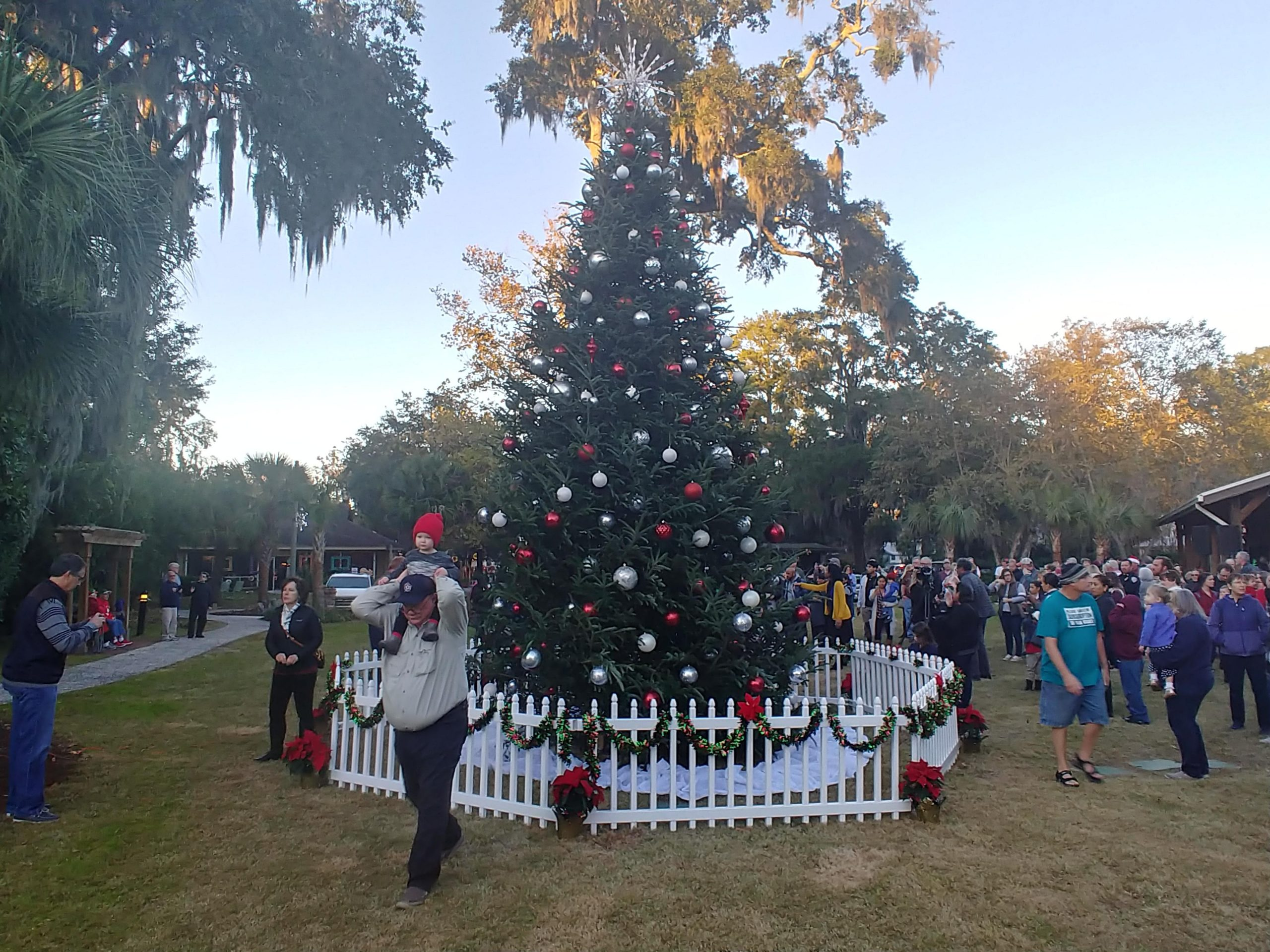 bluffton sc christmas tree lighting