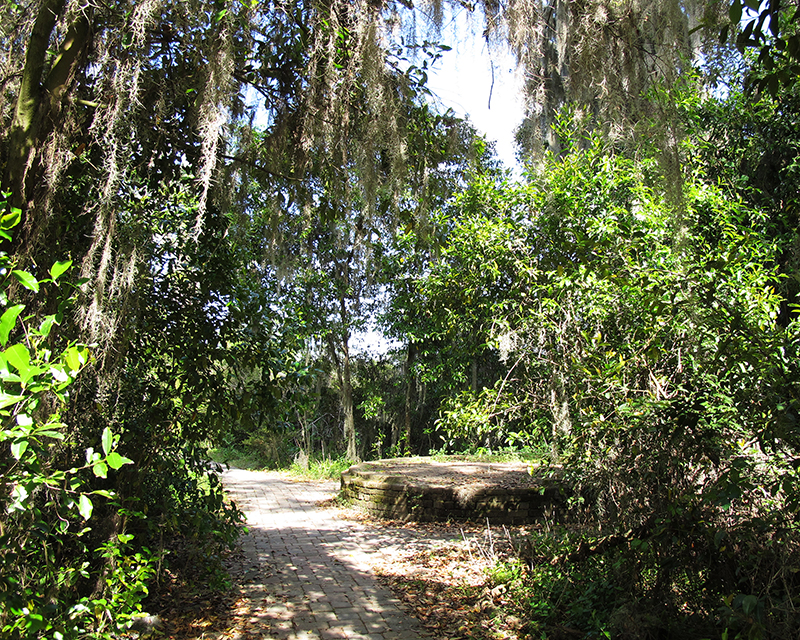 hiking trail - savannah national wildlife refuge sc
