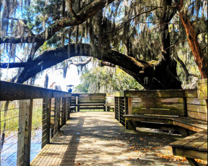 SC Lowcouontry Wildlife Preserves and Nature Trails