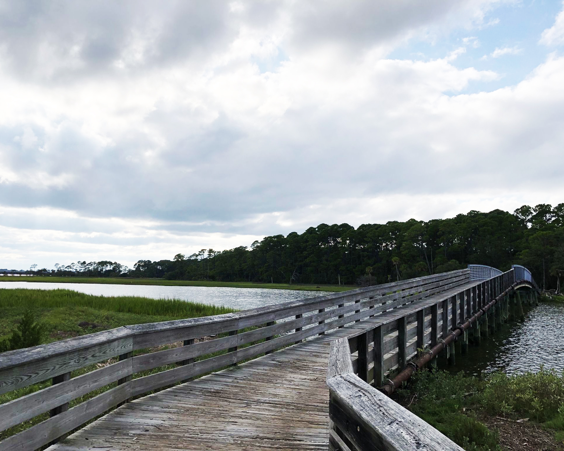 Hunting Island State Parks Nature Trail