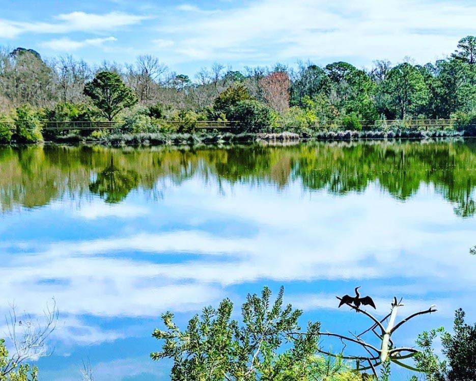 Strolling Crystal Lake Park in South Carolina