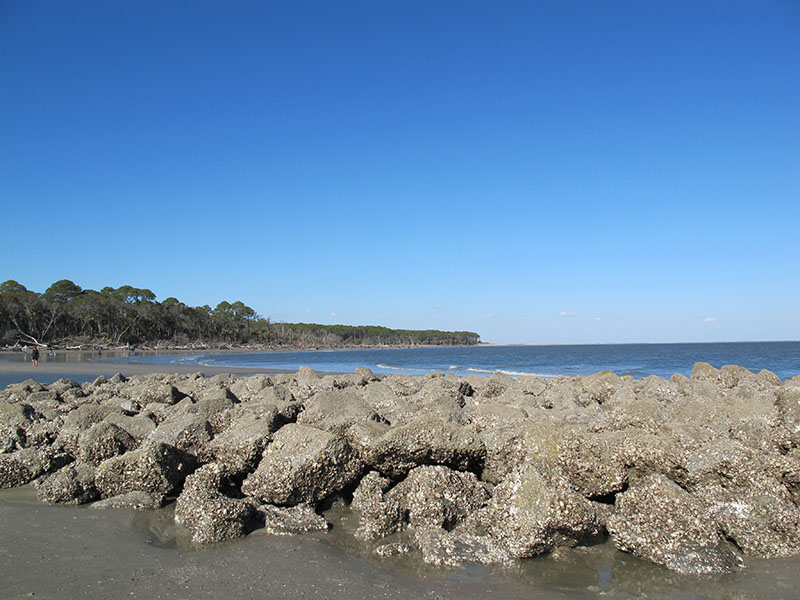 Hunting Island Beach in South Carolina