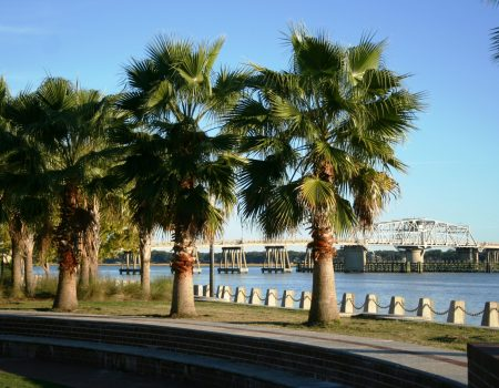 Start Planning Your Trip to the South Carolina Lowcountry!