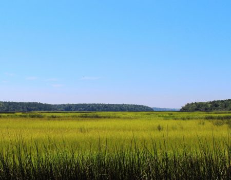 The Lowcountry Revolutionary Trail
