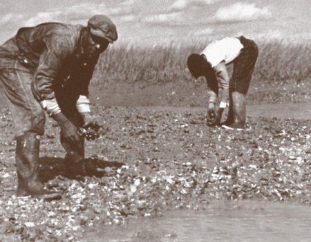 Daufuskie Island's Robert Kennedy Trail Teaches Gullah History